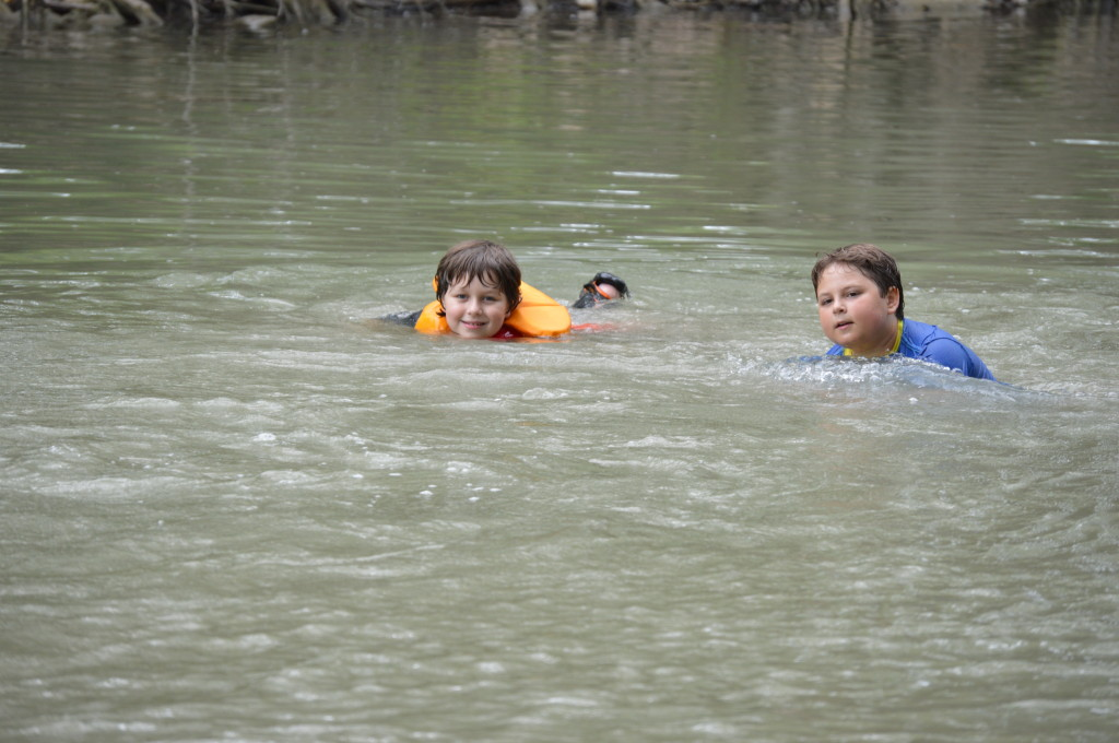 Guadalupe River State Park San Antonio Area Everything