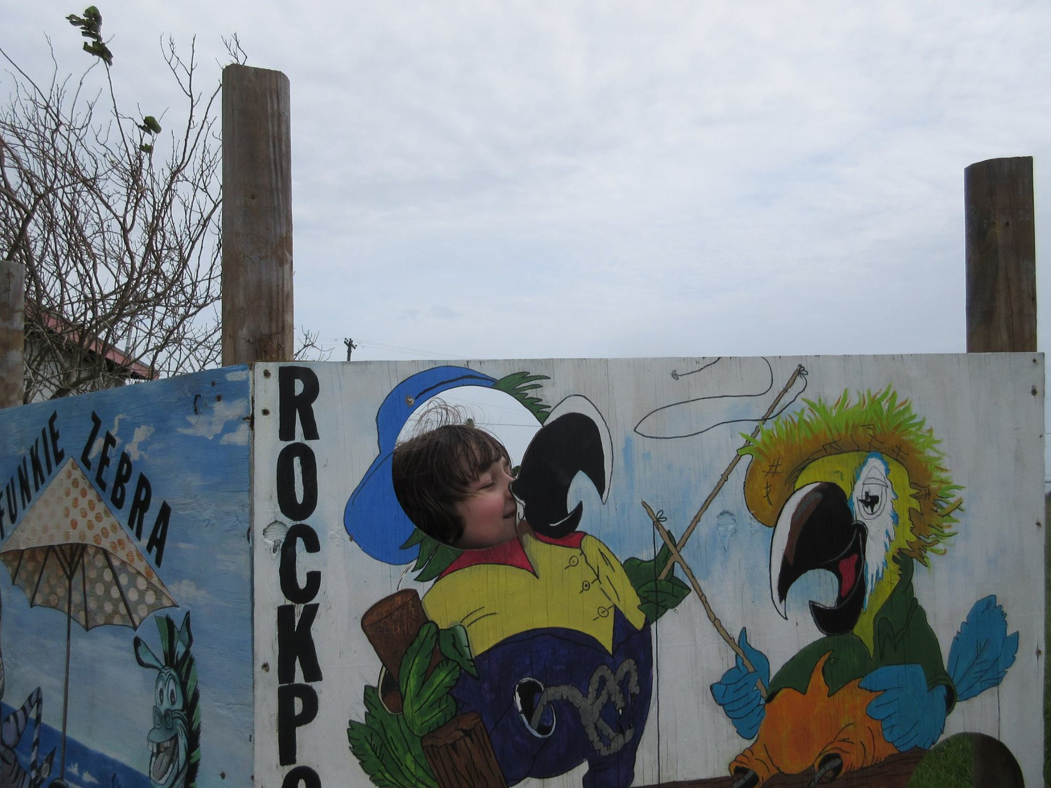 parrotnoseRockport